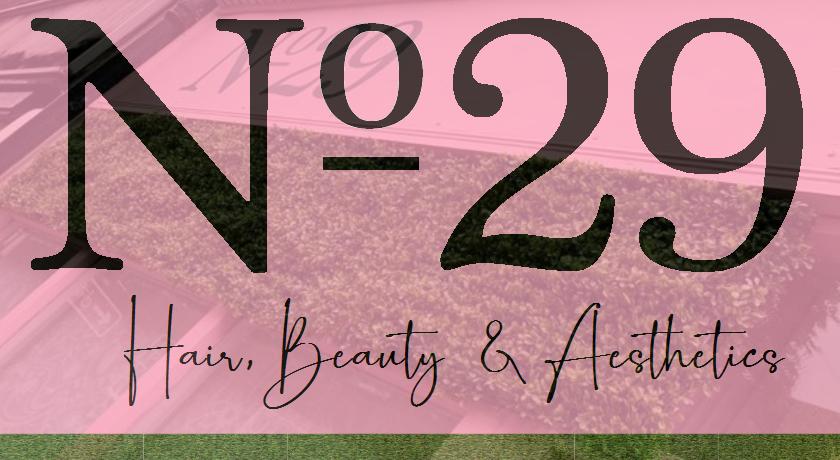 No29 Hair & Beauty Logo